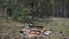 Os carvões vegetais do fogo estão prontos para o BBQ video estoque