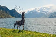 Os cervos feitos a mão em uma costa dos fiordes Fotos de Stock Royalty Free