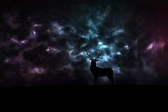 Os cervos mostram em silhueta no espaço Fotografia de Stock
