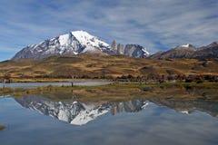 Os chifres de Paine grandiosos e de Torres del Paine Fotos de Stock
