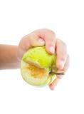 Os childs pequenos entregam guardar uma maçã verde verde Imagem de Stock