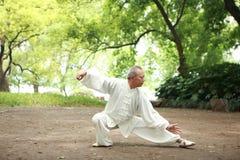 Os chineses fazem o taichi fora Imagens de Stock Royalty Free