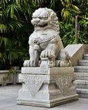 Os chineses tradicionais apedrejam o leão, estátua chinesa do leão do guardião, leão imperial chinês com estilo antigo oriental Imagem de Stock