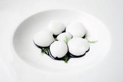 Os chocos minúsculos seriram em um prato branco Foto de Stock Royalty Free