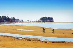 Os ciclistas vão no banco de rio shoaled Ob Fotografia de Stock