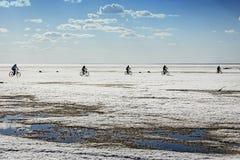Os ciclistas vão no gelo do mar de Ob Imagens de Stock Royalty Free