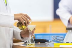 Os cientistas novos estão fazendo experiências em laboratórios de ciência imagens de stock