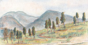 Ciprestes ilustração stock