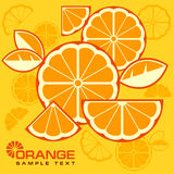 Os citrinos cortam o fundo Imagem de Stock Royalty Free