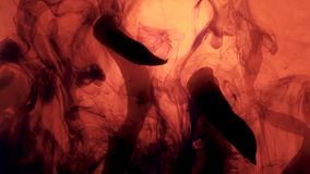 os clubes pretos nublam-se o coral vivo inteiro, fundo coral filme