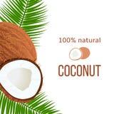 Os cocos e as folhas de palmeira maduros inteiros e rachados com listra text 100 por cento natural Etiqueta vertical tropical Ilustração Stock