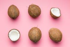 Os cocos partidos ao meio fotos de stock