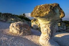 Os cogumelos da pedra perto da vila de Beli Plast, Bulgária imagem de stock royalty free