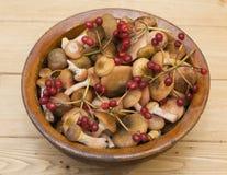 Os cogumelos e as bagas do viburnum em uma argila velha rolam em uma tabela de madeira Fotografia de Stock