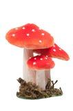 Os cogumelos pontilhados vermelhos da decoração isolaram-se Fotos de Stock