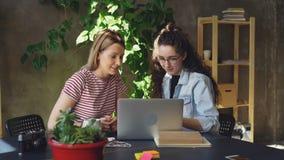 Os colegas fêmeas novos são entusiásticos sobre o projeto novo Estão falando emocionalmente, trabalhando com computador e vídeos de arquivo