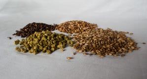Os componentes da cerveja sobre um fundo branco fotos de stock royalty free