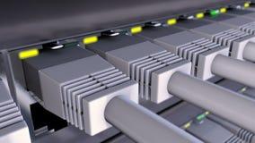 Os conectores RJ45 obstruíram dentro ao laço do interruptor de rede vídeos de arquivo