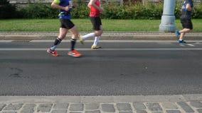 Os corredores de maratona dos p?s dos p?s de corrida aglomeram-se dos atletas video estoque