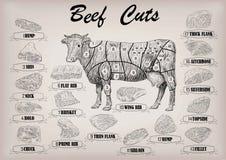 Os cortes inteiros da carcaça do touro da vaca de carne cortaram o esquema s do infographics das peças ilustração royalty free