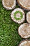Os cotoes de árvore na grama com reciclam o símbolo Fotos de Stock Royalty Free