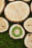 Os cotoes de árvore na grama com reciclam o símbolo Foto de Stock