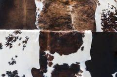 Os couros crus da vaca fecham-se acima Foto de Stock