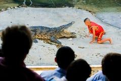 Os crocodilos abrem sua boca 4 fotografia de stock