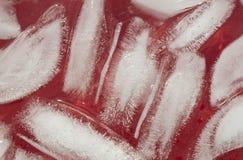 Os cubos de gelo fecham-se acima Fotografia de Stock