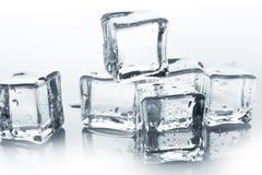 Os cubos de gelo transparentes com água deixam cair no branco Fotos de Stock Royalty Free
