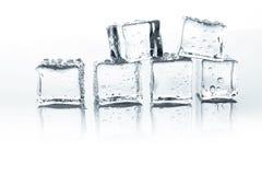 Os cubos de gelo transparentes com água deixam cair no fundo branco Fotos de Stock Royalty Free