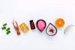 Os cuidados com a pele caseiros e o corpo esfregam com aloés natural dos ingredientes foto de stock