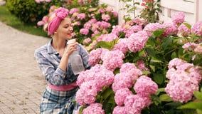 Os cuidados da mulher, pulverizam flores cor-de-rosa na cama de flor A mulher importa-se com flores cor-de-rosa na casa de campo  vídeos de arquivo