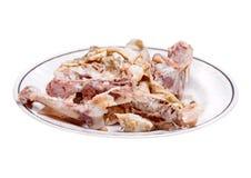 Os cuits de poulet Image libre de droits