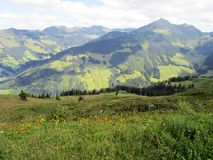 Os cumes - vista de picos e de prado de montanha em Áustria Fotos de Stock