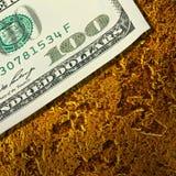 Os dólares das cédulas em pepitas douradas fecham-se acima Fotografia de Stock Royalty Free