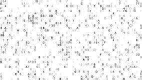 Os dados de Digitas encantam símbolos do código Fotos de Stock