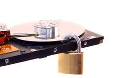 Os dados protegem Foto de Stock