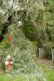 Os danos após o furacão Irene em Whippany NJ Foto de Stock Royalty Free