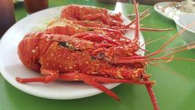 Os danos da lagosta Imagens de Stock