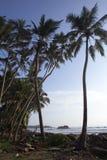 Os danos do tsunami em Sri Lanka Foto de Stock Royalty Free