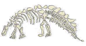 Os de dinosaure Images libres de droits