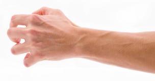 Os dedos curvados na palma no branco isolaram o fundo Imagem de Stock
