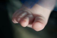 Os dedos do pé pequenos da criança Imagens de Stock Royalty Free