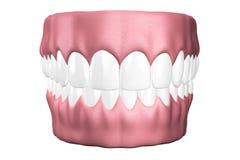 os dentes 3D fecham-se acima Fotos de Stock Royalty Free