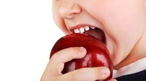 Os dentes de bebê saudáveis mordem a maçã vermelha madura Imagens de Stock Royalty Free
