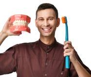 Os dentes grandes manequim e o doutor do dentista com escova de dentes mostram como escovar corretamente seus dentes foto de stock royalty free