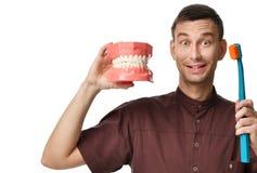 Os dentes grandes manequim e o doutor do dentista com escova de dentes mostram como escovar corretamente seus dentes imagem de stock royalty free