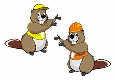 Os desenhos animados beavers dois Imagem de Stock Royalty Free
