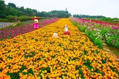 Os desenhos animados nos campos de flor Foto de Stock